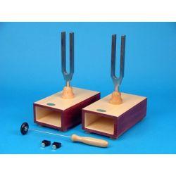 Diapasons amb caixa ressonància V-11860. Freqüències 440 i 440 Hz amb afinador