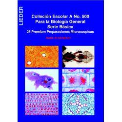 Preparacions microscòpiques Lieder biologia A. Capsa 25 peces