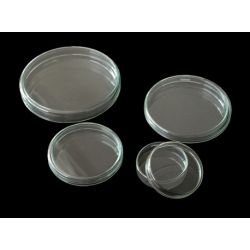 Cápsula Petri vidrio con tapa. Medidas 20x100 mm