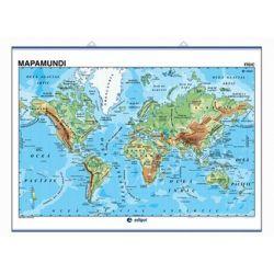 Mapa mural fisicopolític 990x1300 mm. Mapamundi