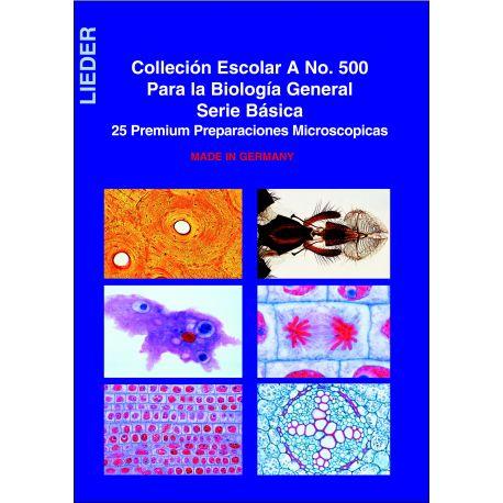 Preparacions microscòpiques L-500-25. Biologia general A