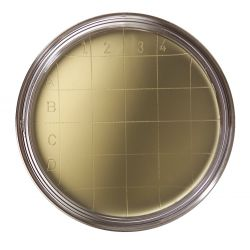 Agar cetrimida pseudomònades contacte L-15332. Capsa 20 plaques