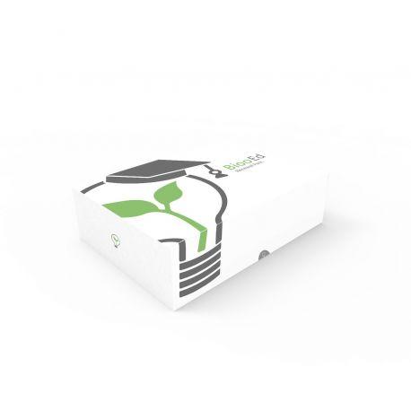 Pack renovación Bioo Ed: Electricidad de les plantas